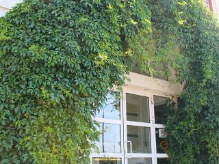 Фотография Офисный центр Сакура-Центр №11